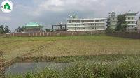5 Kathha plot in Bodh gaya 2km Of 80 Feet Lord budhha