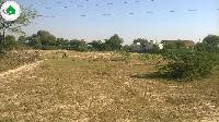 5 kathha land available in Jhanjharpur Darbhanga