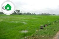 Land In Patna Birla colony Vikash Nagar Aadarsh Nagar phulwarisarif