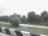 Commercial plot for lease on Didarganj Bakhtiyarpur 4lane near Toll Plaza
