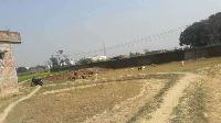 Commercial Plot for sale in Darbhanga