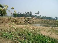 Land and house for lease in punpun thana patna