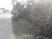 Commercial plot for sale in BAGBARI BHAGALPUR
