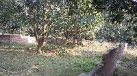 Land For Sale In Motihari