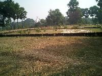 Want to Sell 2 Kattha Land -with Boundary Wall-