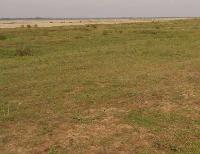 Land for Sale in Ara