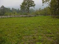 Plot for sale mukhdumpur