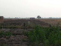 Residential plot - land for sale in Buxar