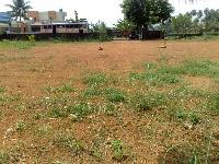 Residential Plot in Patna