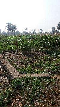 Residensial land for Sale in Bihar Sharif