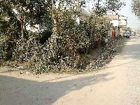 4 katha Land Sale in Bhagalpur