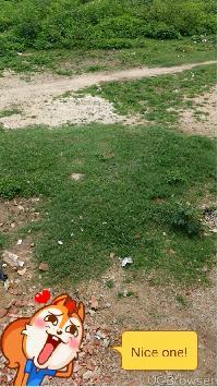commercial plot near balti karkhana chowk ambai road