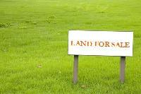 25-30 Bigha Land For Sale Near Jaitipur College Road - 8-5 Lakh Per Katha