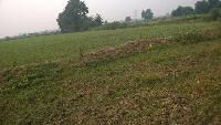 55 DESMIL Land for sale in Deep Nagar