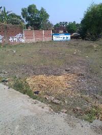 Dipnagar Property 41 Katta