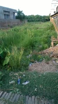 Residential As Well As Commercial Property For Sell In Bairia Adarsh Gram