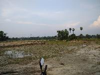 Residencial Cum Commercial Land Of 6 Bigha With 2 Lane