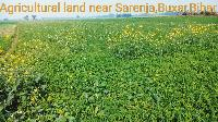 Fertile Agricultural Land For Sale Near Sarenja