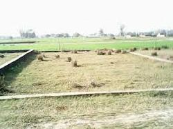 Land To Sell At Chainpura,bihar Sharif