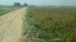 Residential Plot In Basudevpur Darbhanga, Near Delhi More And New Bus Stand Area