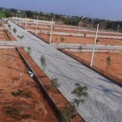Commercial Plot For Sell On Highway(n.h-139)