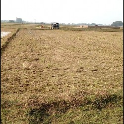 A Plot Of 2 Kathha Near Dak Baba And Petrol Pump Kadirganj Nawada