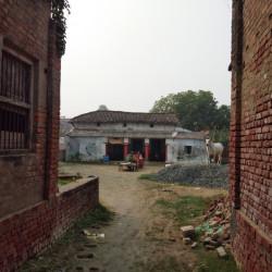 Residential Plot Behind Chainpur Highschool, Chainpur Mubarakpur