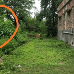 15 Dhoor Land For Sale In Sekhpur Akharaghat