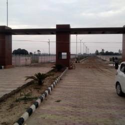 Patna Me 5 Lakh Kigeet Jewllery Le Or Payen 5 Lakh Ka Plot Bilkul Muft