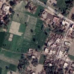 1 Bigha Farm Land For Sale In Balbhadrapur, Samastipur