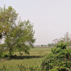 Commercial And Residential Both Are Available In Bihta Near Nh 139