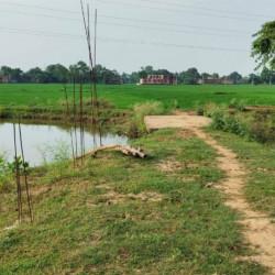 1st Time Cheapest ,residential Plot In Bihta,