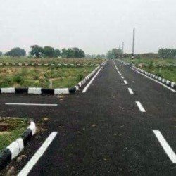 Buy, Plot Near Shiwala More,