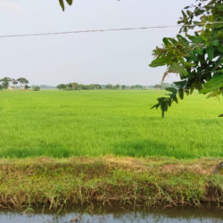 Cheapest Property Near Bihta Railway Station