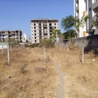 Plot At Rps More 55lakh Katha