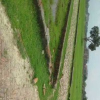 Residential Plot For Sale In Muzaffarpur To Chhapra Road