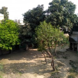 2 Houses Plus  In Approx 5 Katha Land Near Tirhut Academy School, Kashipur, Samastipur