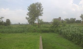 2 Kattha Residential Plot for Sale in Chak Murmur Muzaffarpur at Rs. 15 Lakh / Kattha
