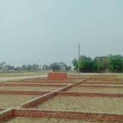 Plots In Naubatpur For Sale