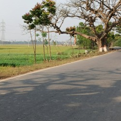 Commercial Plot Suitable For Petrol Pump And Godawn