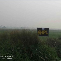 Plot In Shiwala For Sale