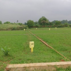 Good Residential Plot For Sale