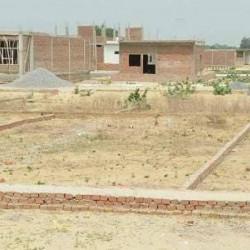 Buy A Residential Plot In, Bihta Ara Road