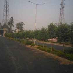 Patna City Plot Booking For 50percent Discount Under Ots-One Time Settlement  Offer With Cash Back