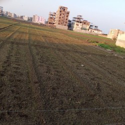 Plot In Patna For Sale