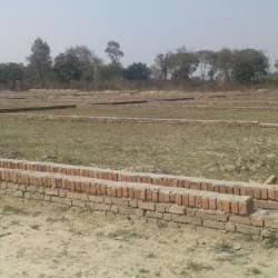 2 bigha Plot For Sale