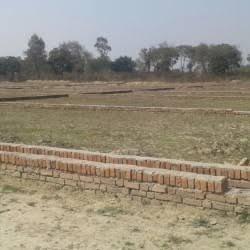 2 bigha Plot For Sale