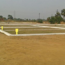Residential Plot Near Naubatpur Shine City