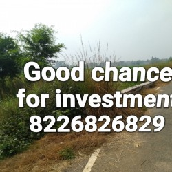 Plot Available For Sell In Dulhin Bazar Bharatpura, Paliganj