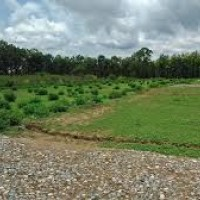 5 Kaththa Plot For Sale Near Jadhua.. (sahdullapur)